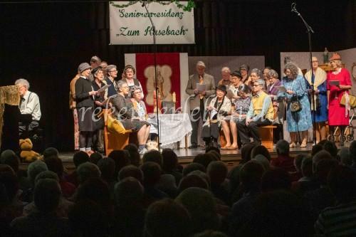 Sängerbund KlR Revue-20