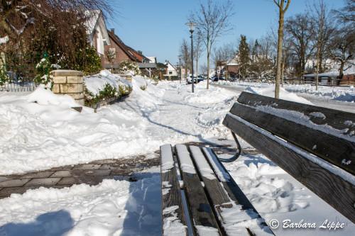 Reken im Winter-10