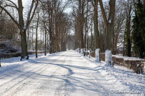 Reken im Winter-11