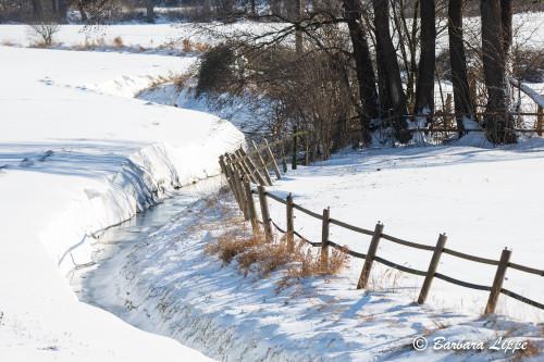Reken im Winter-15