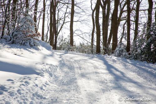 Reken im Winter-16