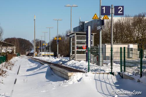 Reken im Winter-20