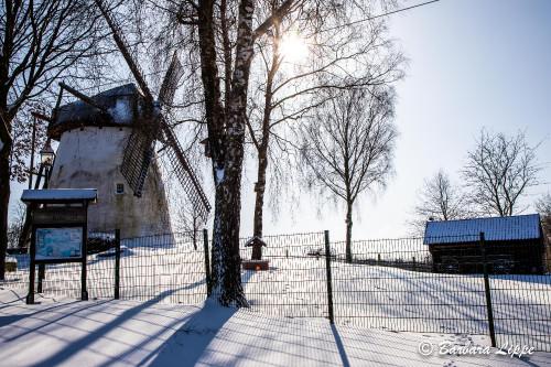 Reken im Winter-6